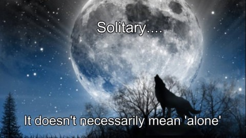 ~ Solitary Doesn't Always Mean 'Alone' ~