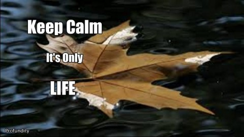 ~ Keep Calm, It's Only Life ~