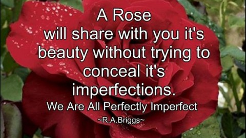 ~ Perfect Imperfections ~