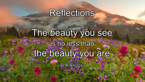 ~ Reflections ~