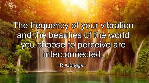 ~ Raise The Vibration ~