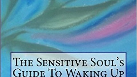 The Sensitive Soul's Guide To Waking Up