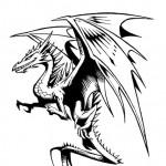 Profile picture of Dragon