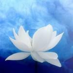 Group logo of spiritually speaking